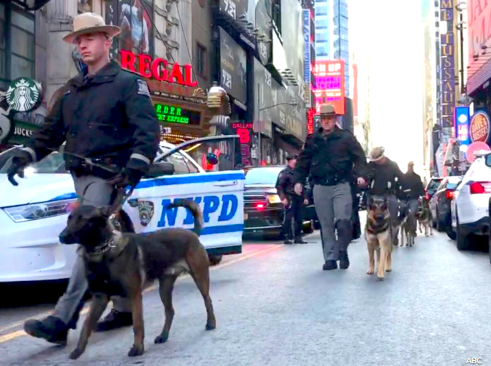 First Responders march dogs to the crises area