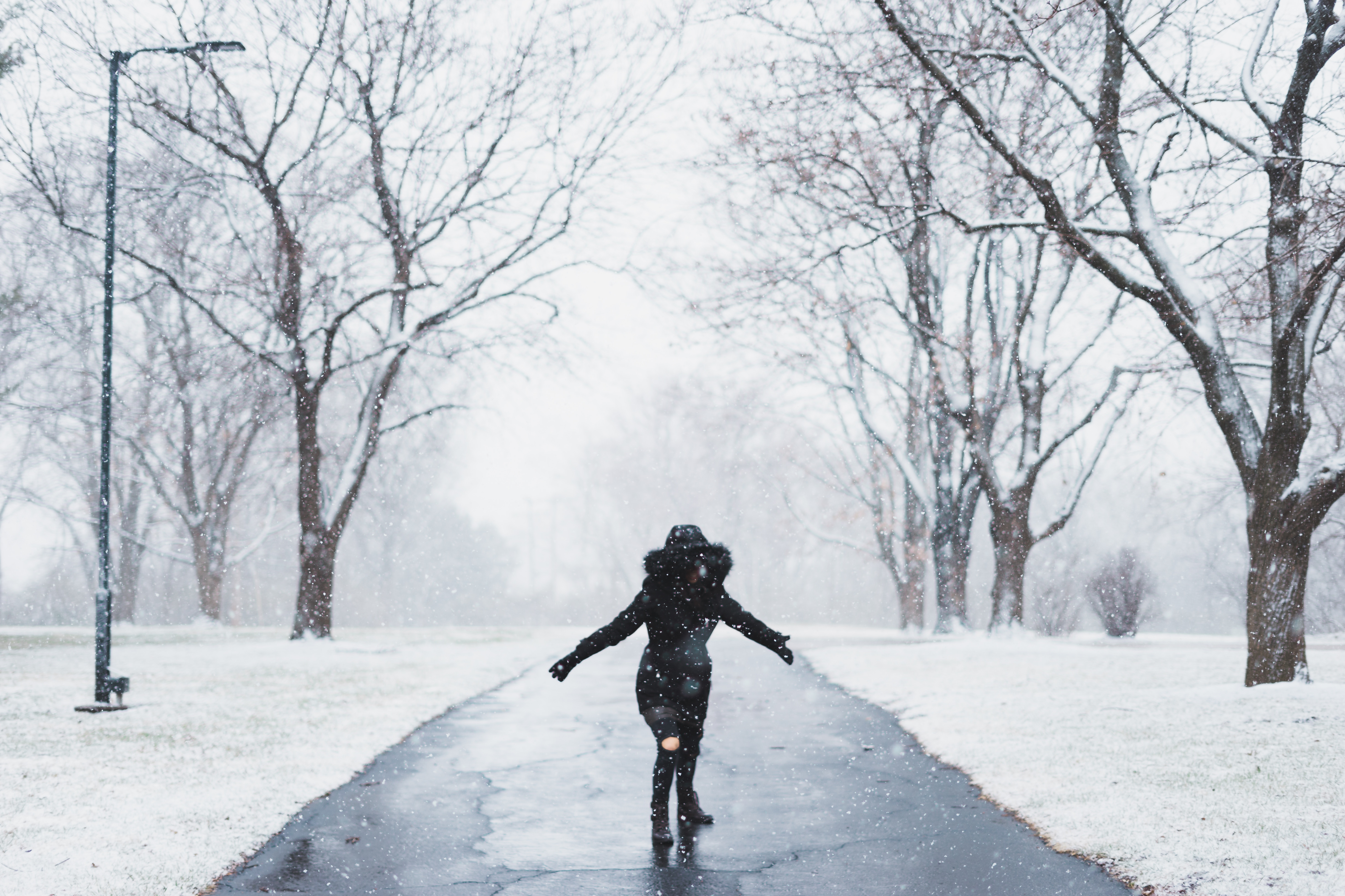 Surviving the winter storm Bomb Cyclone hits Northeast Photo by Aaron Lee on Unsplash
